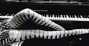 [808005] Greeting Card - 'Piano Legs' by The Alternative Image Company